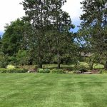 Add landscaping at the back of your property to create a natural border in West Bloomfield MI