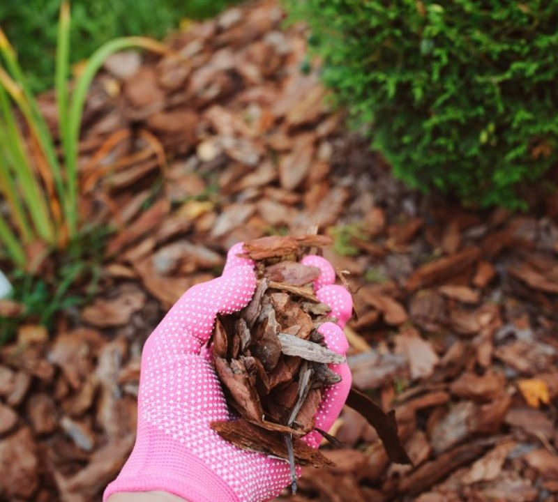Choose the right type of mulch for your landscape in South Lyon MI