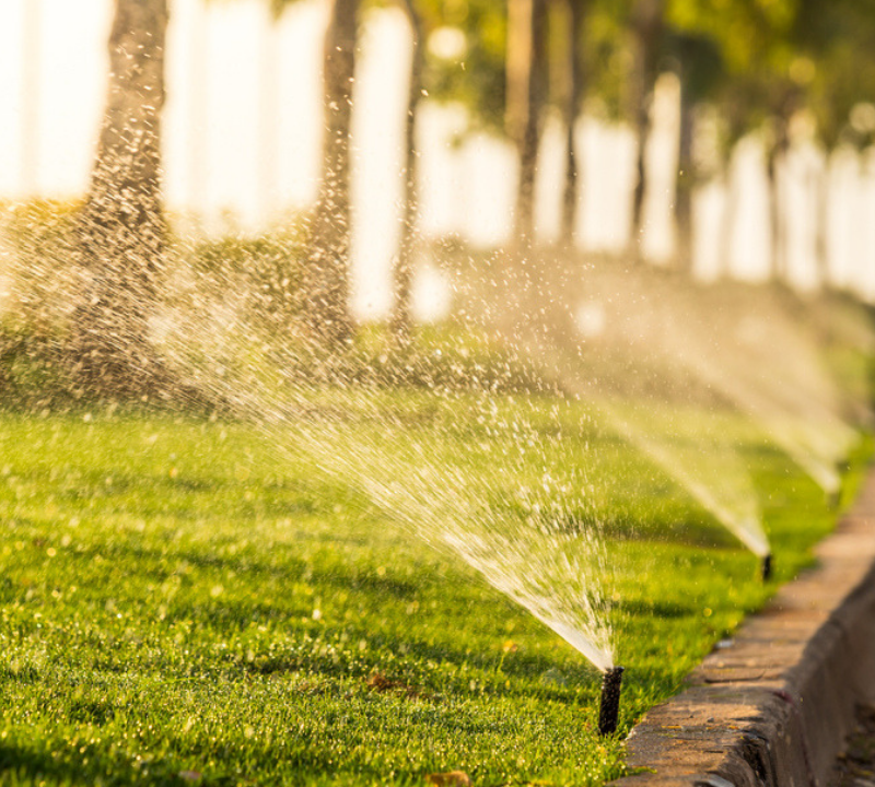 Irrigation services for your Michigan lawn