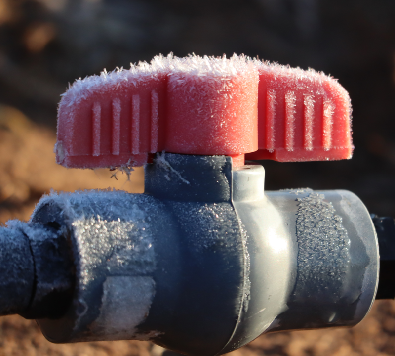 frozen irrigation