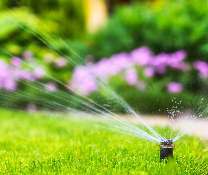 installed irrigation system watering grass